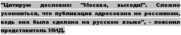 Совет Федерации возмущен провокациями со стороны госдепа США