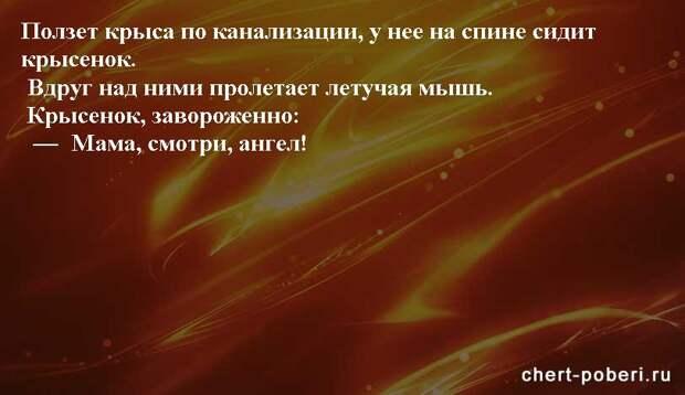 Самые смешные анекдоты ежедневная подборка chert-poberi-anekdoty-chert-poberi-anekdoty-04440317082020-2 картинка chert-poberi-anekdoty-04440317082020-2