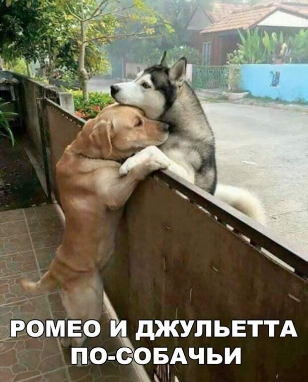 Вчера была пятница... Улыбнемся))