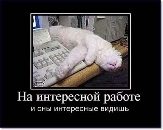 Смешные комментарии. Подборка chert-poberi-kom-chert-poberi-kom-43040703092020-4 картинка chert-poberi-kom-43040703092020-4