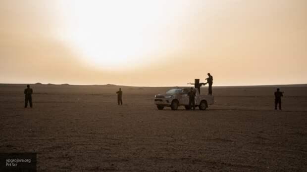 Курдские террористы в САР выпустили свыше 500 боевиков ИГИЛ