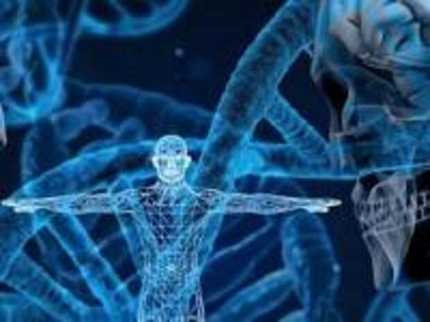 Четвертая ветвь человечества - незамеченная генетика