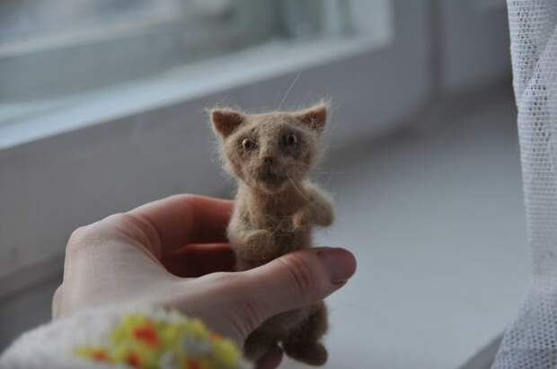 Вот такое очаровательное создание получилось из шерсти котейки валяние, валяние из шерсти, животные, кот, коты, питомцы, своими руками, фото