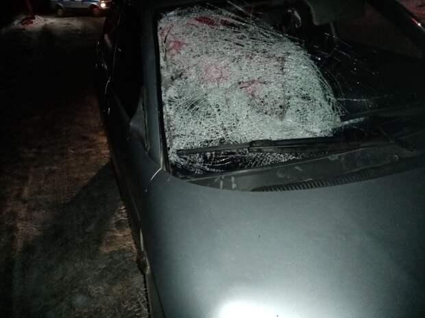 Пьяная девушка насмерть сбила пешехода в Ярском районе