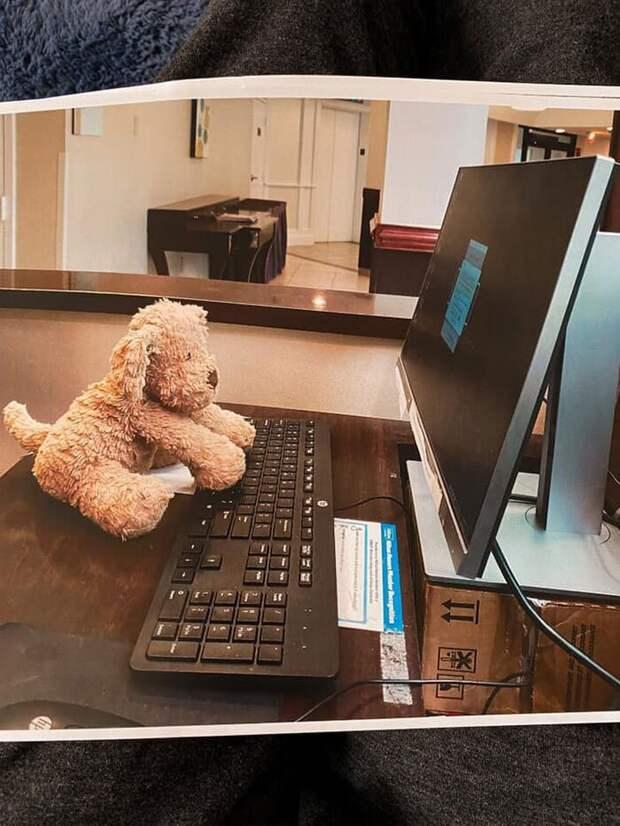 Девочка забыла в отеле плюшевого друга, но сотрудники о нем позаботились