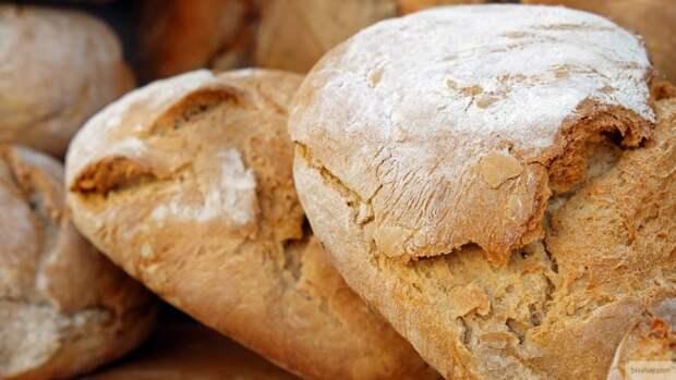 Названа средняя цена хлеба в российских регионах