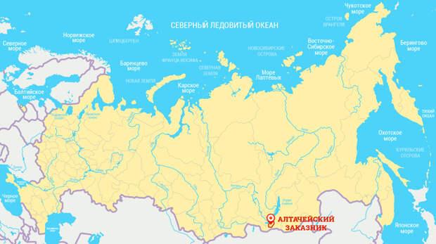 Красоты России. Край, где ревут изюбри