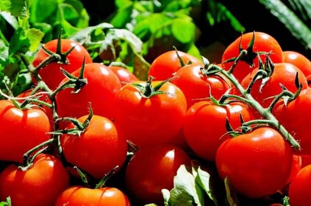 Зимой из помидоров можно приготовить суп-пюре или соус.