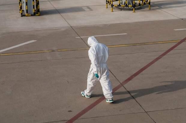 Вспышку смертельного вируса Нипах зафиксировали в Индии