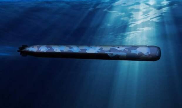 «Субмарина приблизится к идеальным биоформам»: во Франции разрабатывается подлодка SMX31E