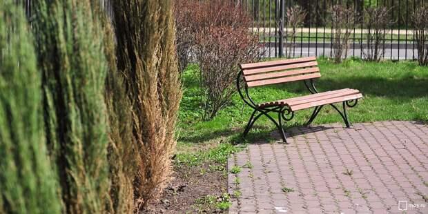 Лавочки появятся во дворе на Ленинградском шоссе до конца апреля — управа
