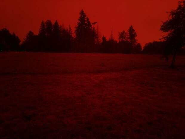 6 кроваво-красных фото города Салема, где лесные пожары уничтожают все вокруг