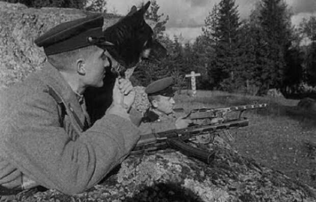МАРТ 1945: ЛИКВИДАЦИЯ БАНДЕРОВЦЕВ У ГОРЫ МОНАСТЫРЬ