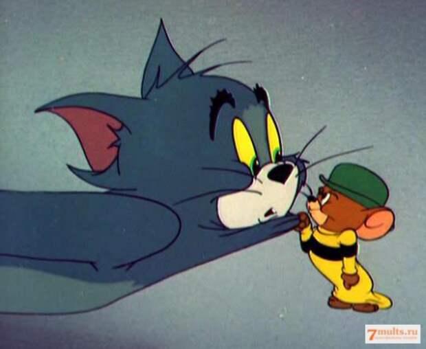 Том и Джерри снова в деле