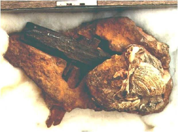 О молотке, обнаруженном в куске породы возрастом 300 миллионов лет.