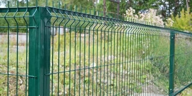 Популярный забор из профлиста оказался под запретом? забор, истории, строительство, фвкты