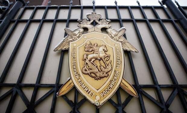 СКРоссии возбудил дело пофакту обстрела поселка Еленовка вДНР