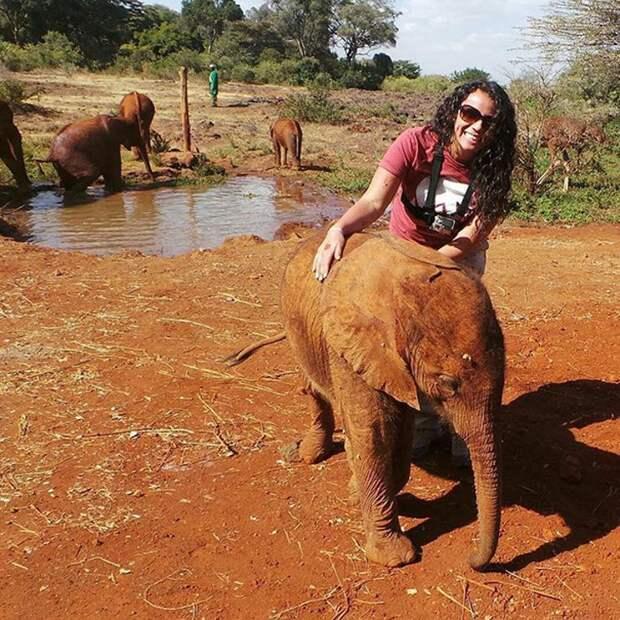 Слоненок-сирота каждый день обнимает страуса. Он потерял мать, но приобрел друга!