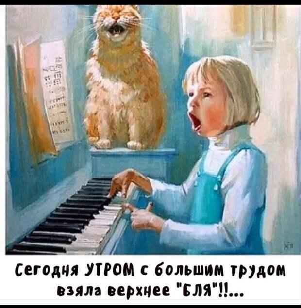 Зять – теще: – Мама, вы здесь не видели синюю таблеточку на столе?...