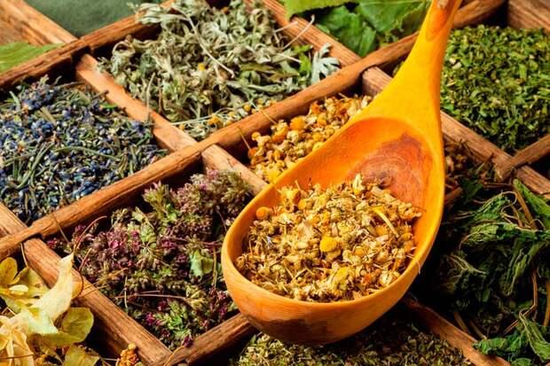 Смеси лекарственных трав