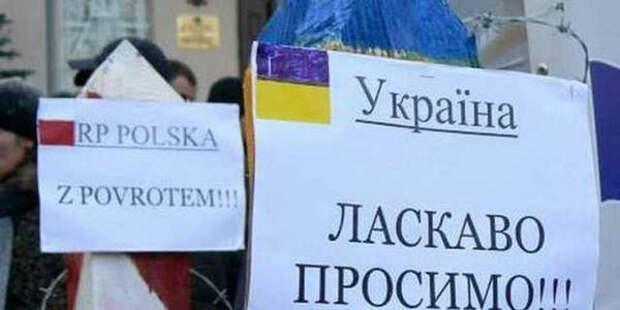 Поляки массово едут на Украину за водительскими правами