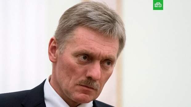 Песков назвал действия Чехии в отношении России истерикой