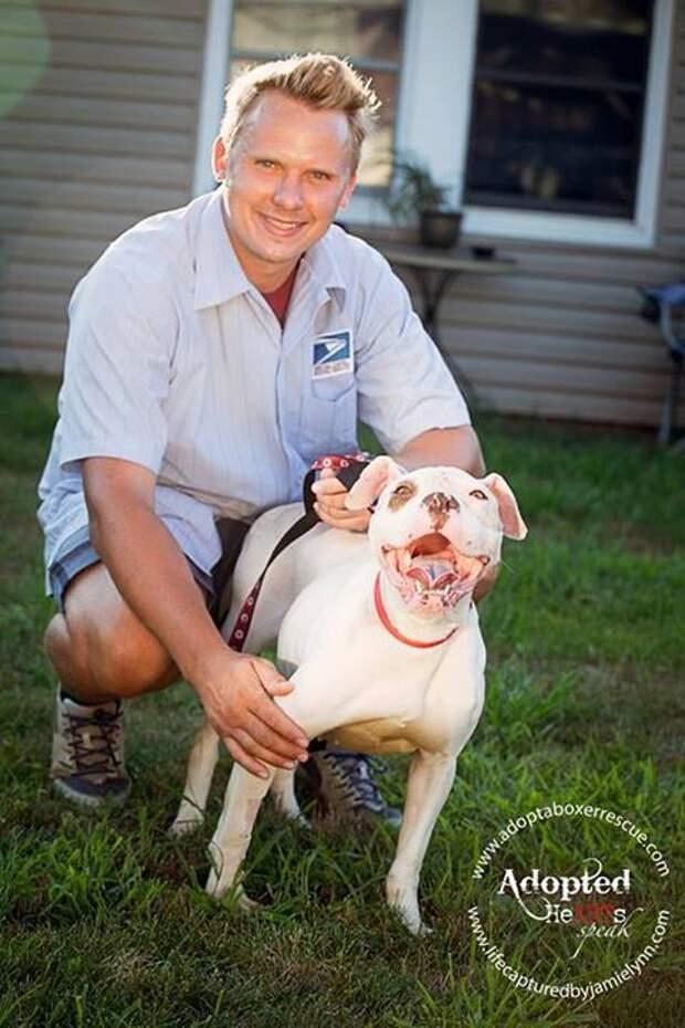 Курьер нашел истощенную собаку привязанную к дереву. И вот что он сделал