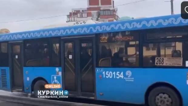 По маршруту №268 в Куркине начали курсировать комфортабельные автобусы