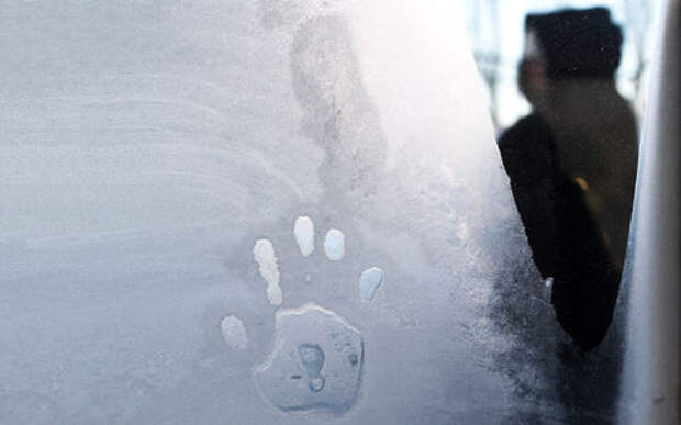 Водитель автобуса высадил 9-летнюю девочку на мороз