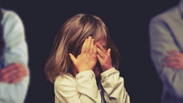В Карелии биологические родители похитили девочку у семьи опекунов