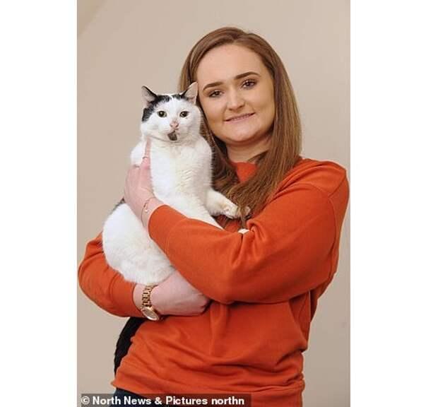 Хозяйка думала, что ее кот умер, но через три года он вернулся живым!