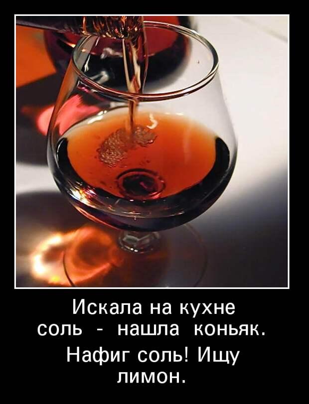 Фотография: Коньяк | Живой Ангарск | LiveAngarsk.ru