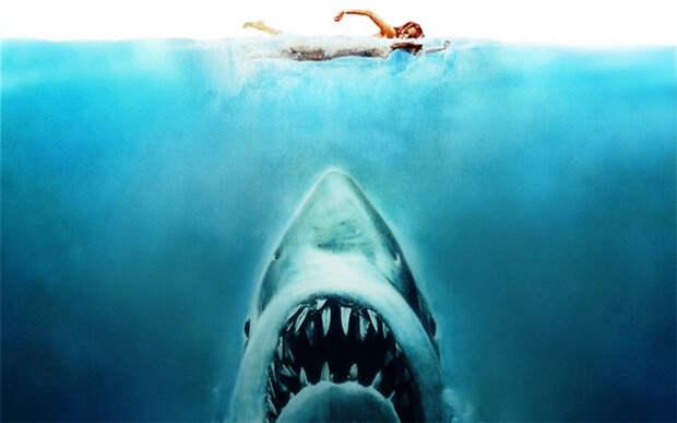 Как возможно отбиться от акулы