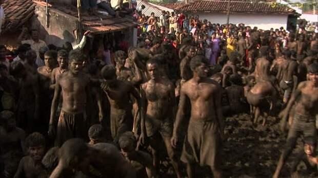 Индусы отметили национальный праздник Битвой на Коровьем Навозе