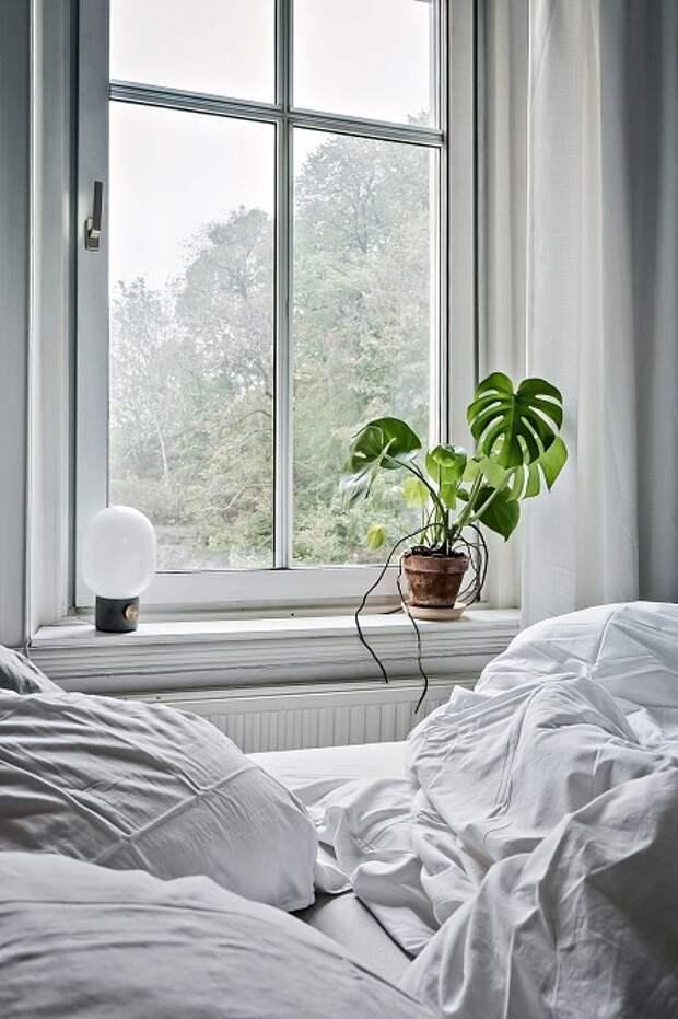 Фото: Bjurfors