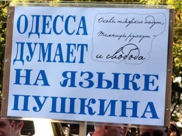 Педагогическое подполье Украины