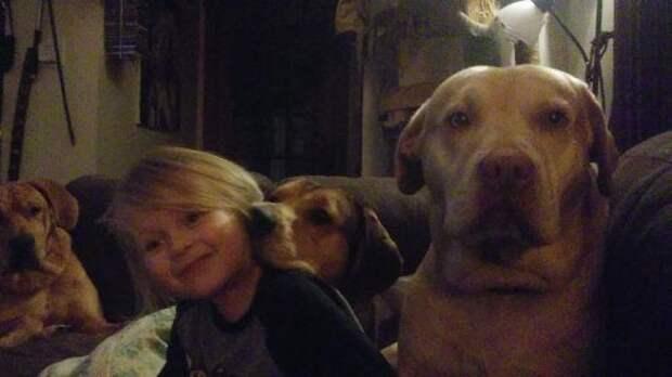 19 доказательств того, что дети не могут жить без домашних животных