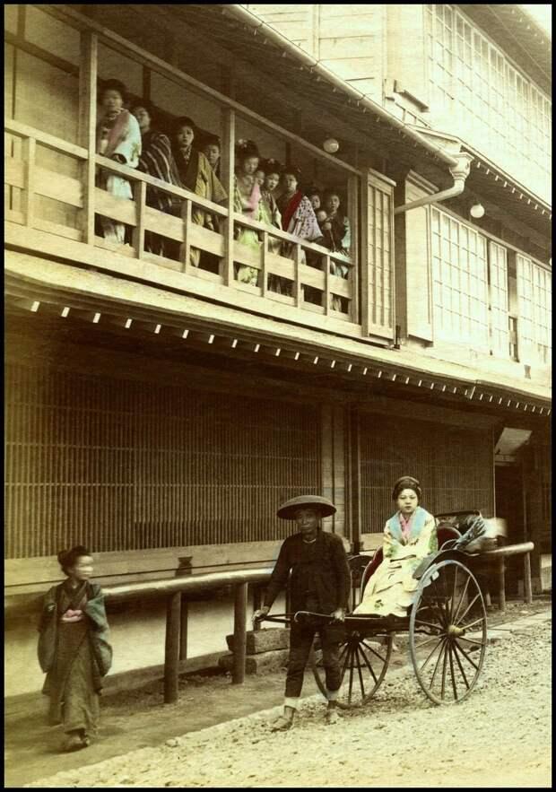1895. Бордель. «Цветение вишни»  в Йокогаме