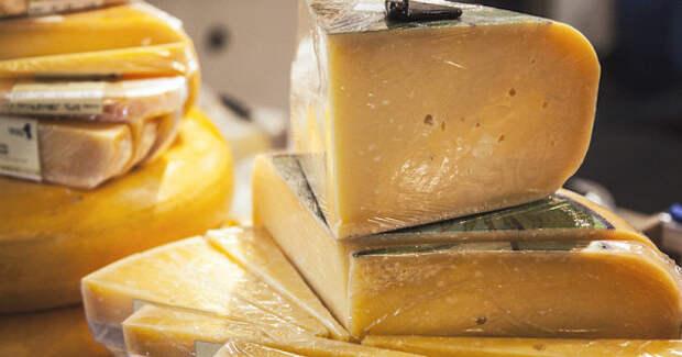 Почему беременным женщинам нестоит есть сыр