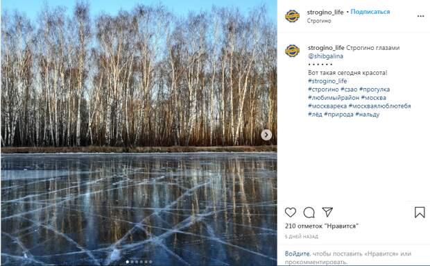Фото дня: ледовое зазеркалье Строгина