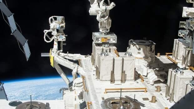 Панспермия в действии: как бактерии могут выживать в космосе