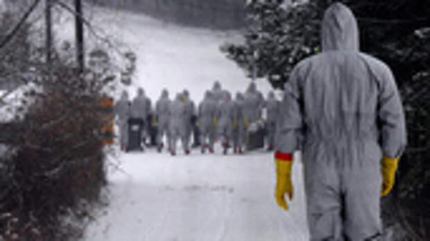 Не так страшен вирус, как его малюют: Коронавирус атакует не людей, а системы здравоохранения