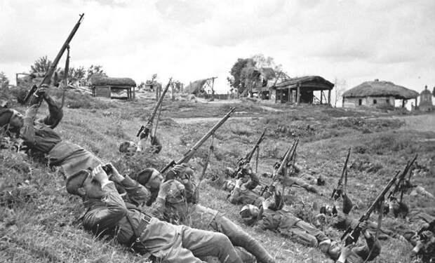 Кого не трогали снайперы по время войны