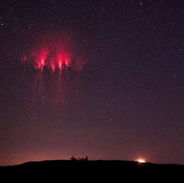 16 фото диковинных вещей, которые выглядят действительно поразительно (15 фото + 2 видео)