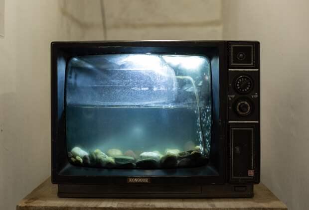 Переделанный под аквариум телевизор