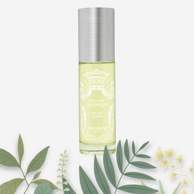 Amazingreen и еще 6 лучших травяных парфюмов