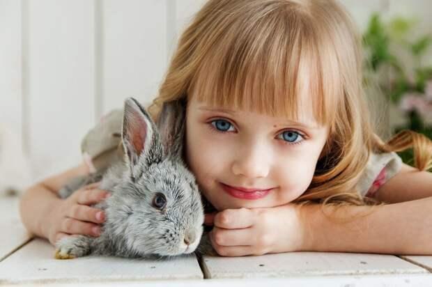 Как обезопасить детей от домашних животных