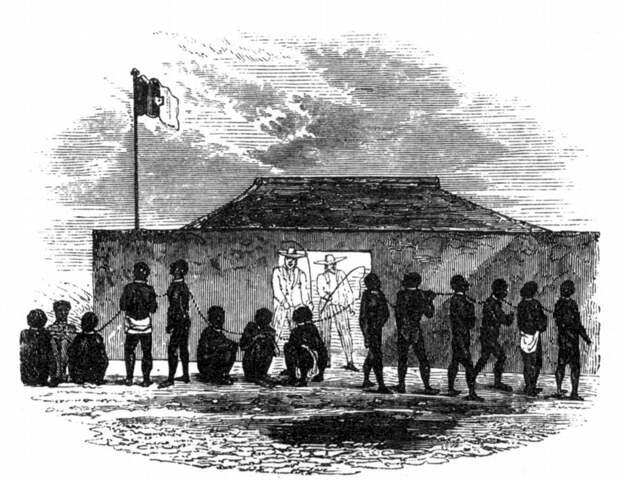 Пригнанные рабы и белые работорговцы (Дагомея, 1850 год)