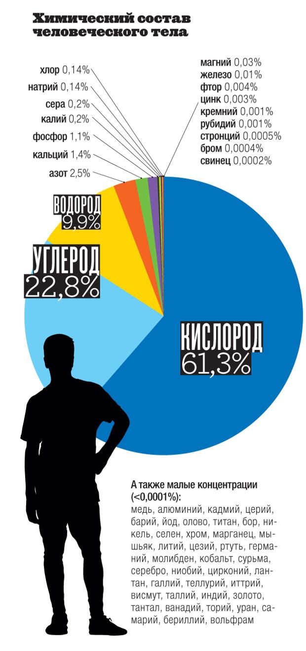 VS04_028_Infografika.jpg