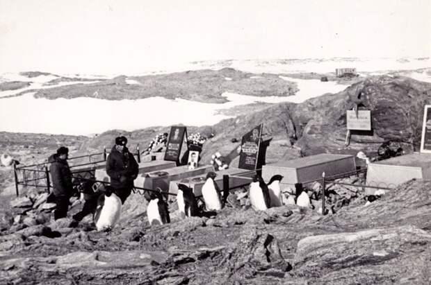 Кладбище в Антарктиде